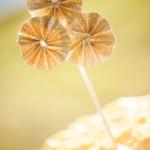 640_bruidstaarttoppers-gouden-rondjes-stokje